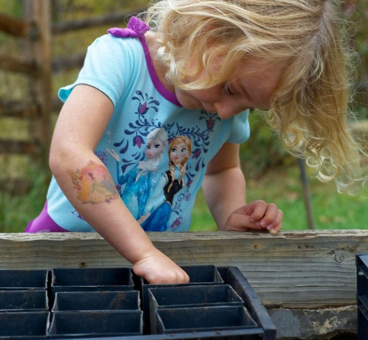 Montessori advocates want to demystify the method