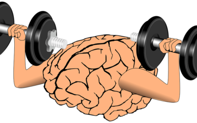 The Backwards Brain Bicycle – Smarter Every Day 133